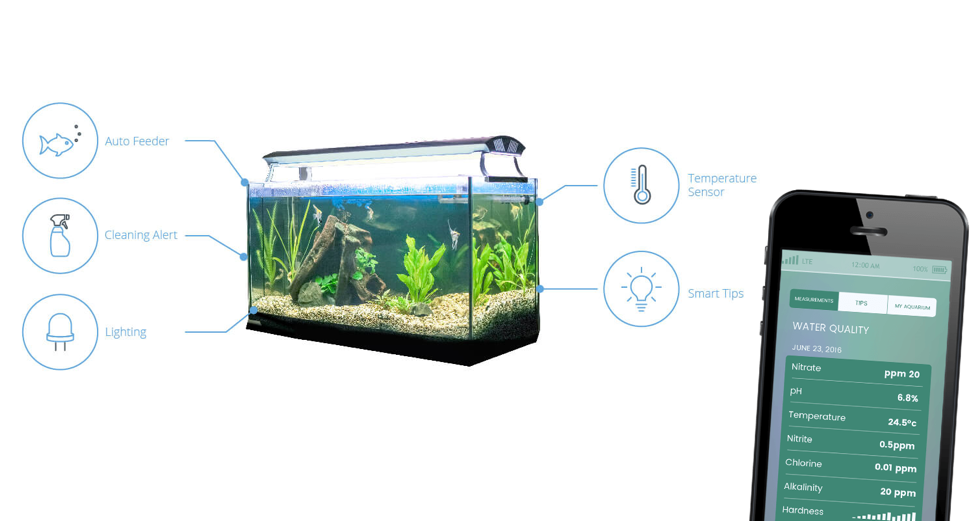 Attacker uses smart fish tank to steal casino data for Smart fish tank